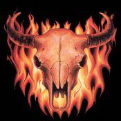 T-Shirt Bull Skull Flames, schwarz