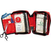 FIRST Aid Kid small